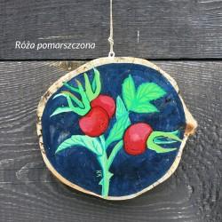 Róża - dekor